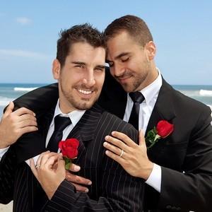 в каких странах узаконены однополые браки