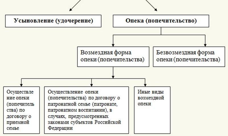 как можно усыновить ребенка в россии