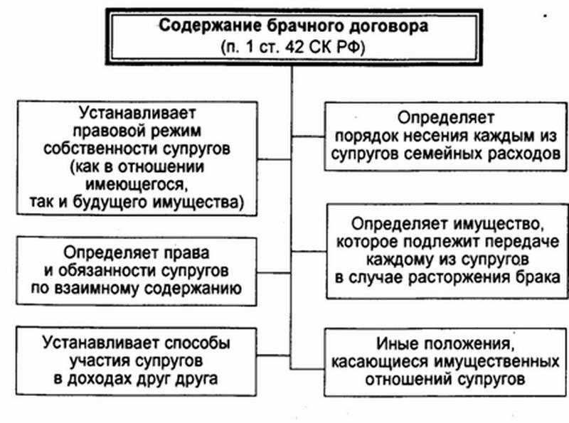 шаблон брачного договора