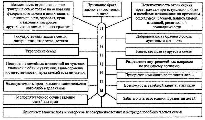 семейный кодекс принципы