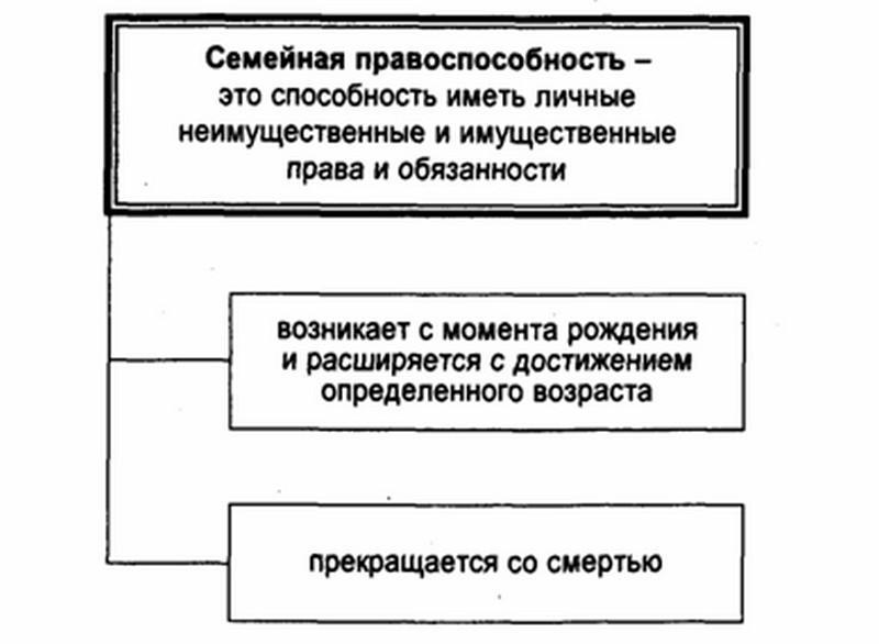 объекты семейных правоотношений содержание семейных правоотношений