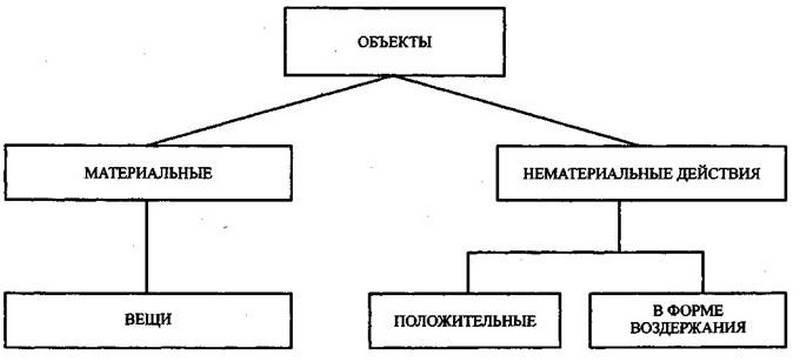 определение объекты и субъекты семейных правоотношений
