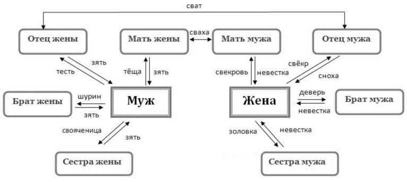 Что такое степень родства и как она определяется