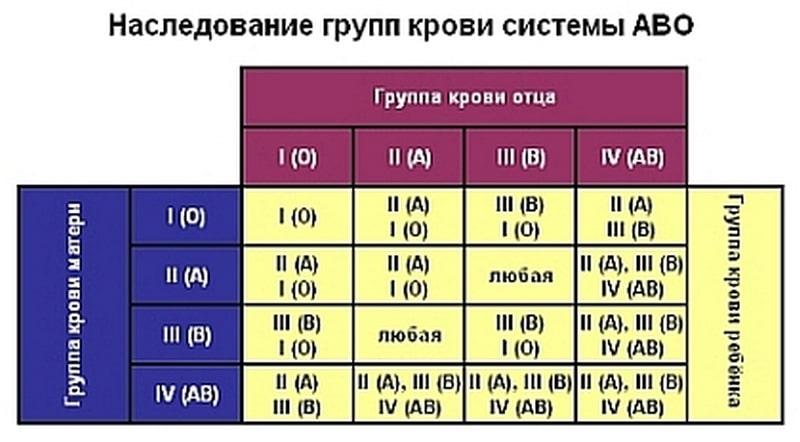 таблица определение отцовства по группе крови