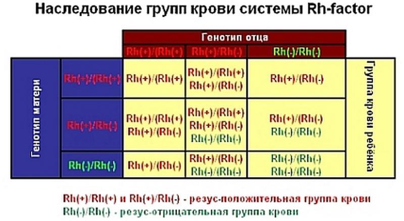 как определить родство по группе крови таблица
