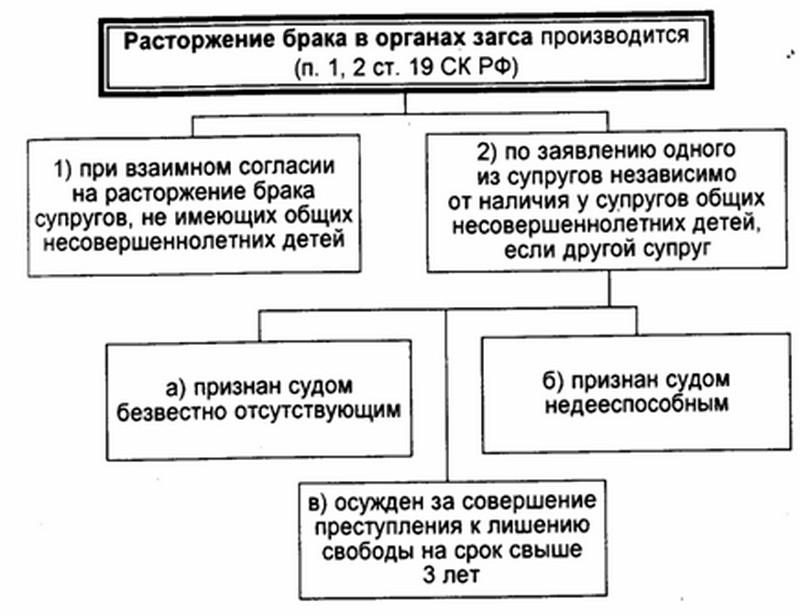 процедура развода через суд без детей