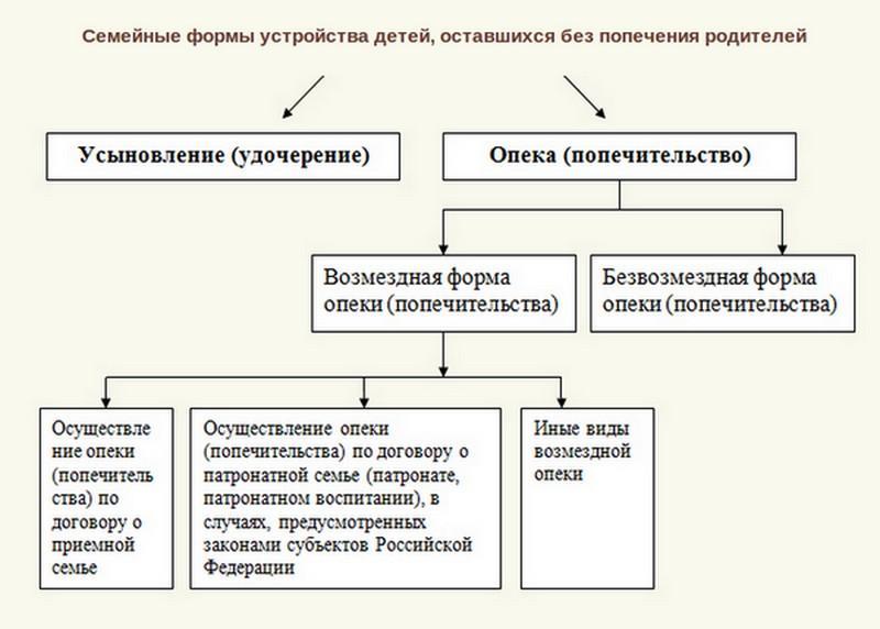 усыновление российских детей иностранными гражданами допускается