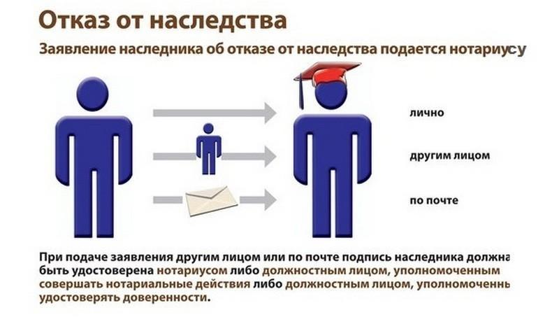 Особенности наследования по закону: сроки и порядок принятия или отказа