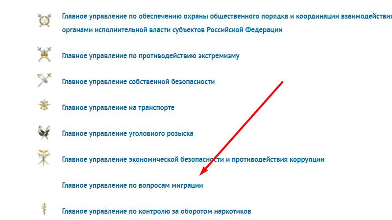 Как проверить получение гражданства РФ по фамилии: готово или нет