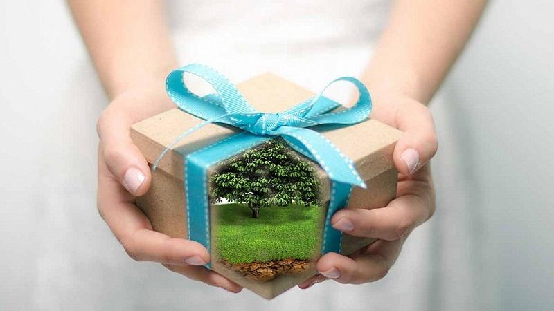 Как оформить дарственную на дачу между близкими родственниками