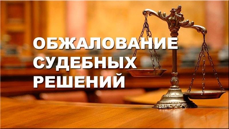 Апелляция на решение мирового судьи образец заявления